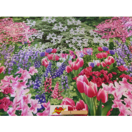 Garden Nature