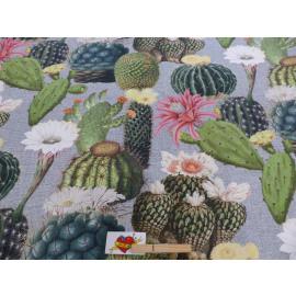 Canvas Cactussen