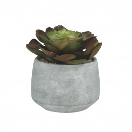 SUCCULENT - artificial succulent in cement pot - green - h15 cm