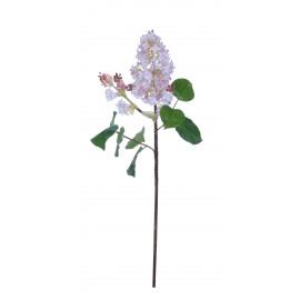 LILAC - sering - lavendel - h81 cm
