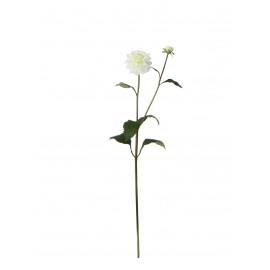 DAHLIA - dahlia - wit - h79 cm