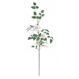 CLEMATIS - clematis spray - blanc - h103 cm