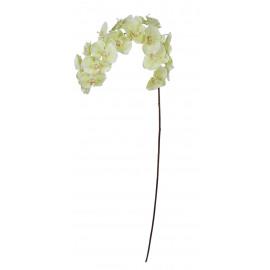 PHALAENOPSIS - vlinder orchidee - kunststof - H 188 cm - wit