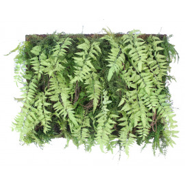 FERN - fern mix wall deco -  - L 100 x W 20 x H 75 cm - green