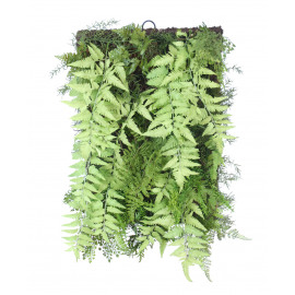 FERN - fern mix wall deco - green - 61x41 cm