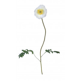 POPPY - coquelicot iceland - synthétique - H 63 cm - blanc