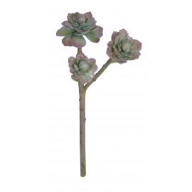SUCCULENT - succulente - synthétique - H 46 cm - vert
