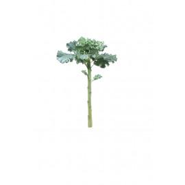 KALE - branche - synthétique - H 51 cm - vert
