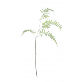 FERN - fern - synthetics - H 160 cm - green
