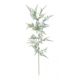 FERN - varen - groen - H 147 cm
