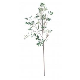 OLIVE - olijf - groen - H 149 cm