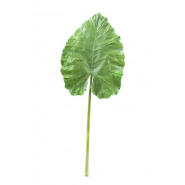 GIANT TARO - giant leave - green - H 160 cm