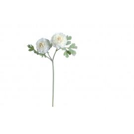 RANUNCULUS - Ranunculus bloem - wit - H 62 cm