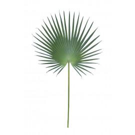 FANPALM - fanpalm blad - groen - H 121 cm