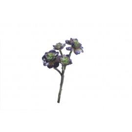 SUCCULENT - succulent -  - H 41 cm - green