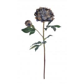 PEONY - pioen - multi -  H 57 cm