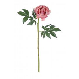 PEONY - pioen - licht roze - H 62 cm
