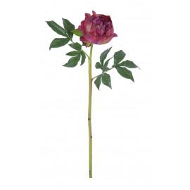 PEONY - pioen - roze - H 62 cm