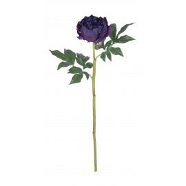 PEONY - pioen - violet - H 62 cm