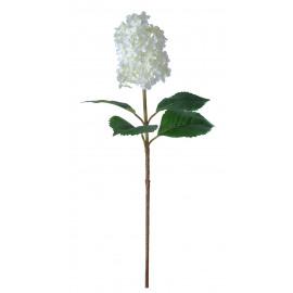 HYDRANGEA - hortensia - wit - H 75 cm