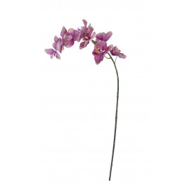 PHALAENOPSIS - orchid - synthetics - H 89 cm - dark pink