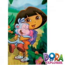 Dora The Explorer - treat bags