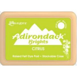 Adirondack Brights Citrus