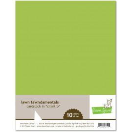 Cardstock in cilantro