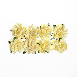 Paper flowers Clove Cream white
