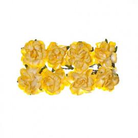 Paper flowers clove light yellow