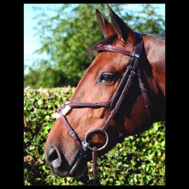 Dy'on Fig 8 Noseband Bridle