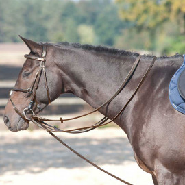 Lamicell Leatherdraw Reins