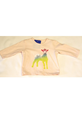 tshirt LM rainbow lamb