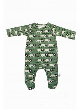 pyjama poedel otto  Onnolulu zomer 2019