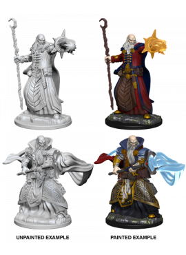 Nolzur's Miniatures: Human Male Wizard