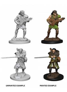 Nolzur's Miniatures: Human Male Bard