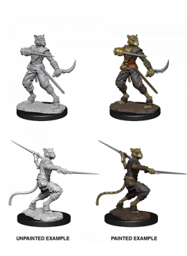 Nolzur's Miniatures: Male Tabaxi Rogue