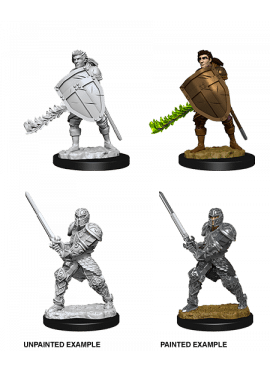Nolzur's Miniatures: Male Human Fighter