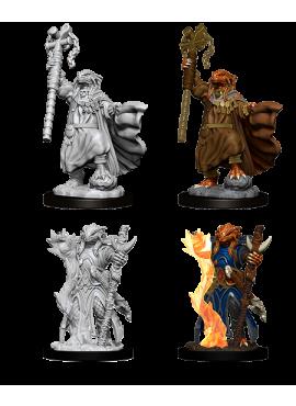 Nolzur's Miniatures: Female Dragonborn Sorcerer