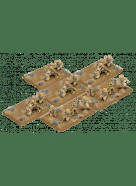 Desert Rats MMG platoon