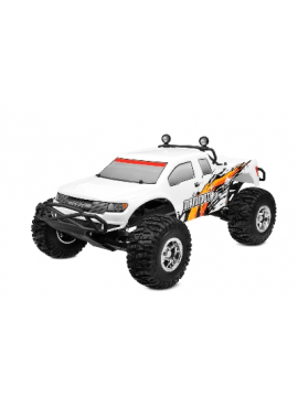 Mammoth SP 1/10 monster truck brushed