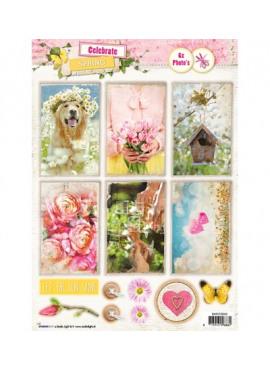 Celebrate Spring photo's nr.555
