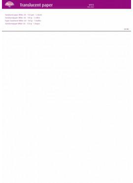 Translucent Paper White
