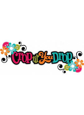 Vrije Crop 3 september 2017