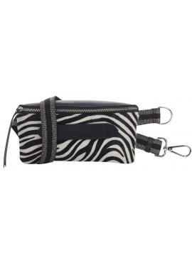 Coachella zebra