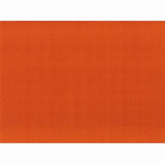 FIESTA SET DE TABLE 30x43cm 60g/m² ORANGE UNI 500 pièces Orange