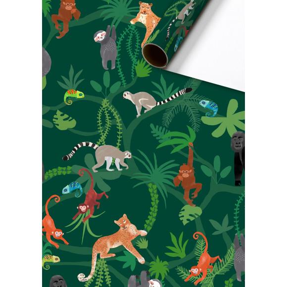 STEWO Inpakpapier Groen Lauro 200x70cm Groen