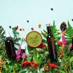 Natuurlijke supplementen vlooien