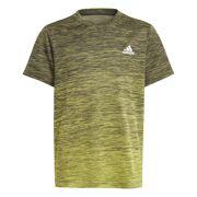 Adidas - A.R. Grad T-shirt Kids