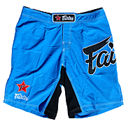 Fairtex Board Shorts AB2 (Groot logo)